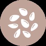 allergen-information-sesame